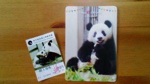シャンシャン1歳記念カード