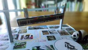 雨の日でも楽しめる上野動物園
