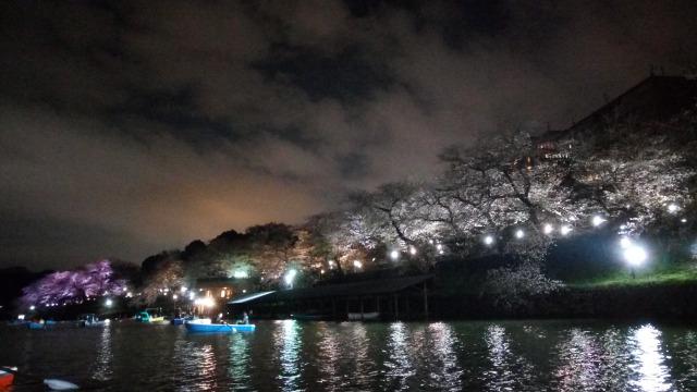 千鳥ヶ淵ボート場と夜桜(ライトアップ)