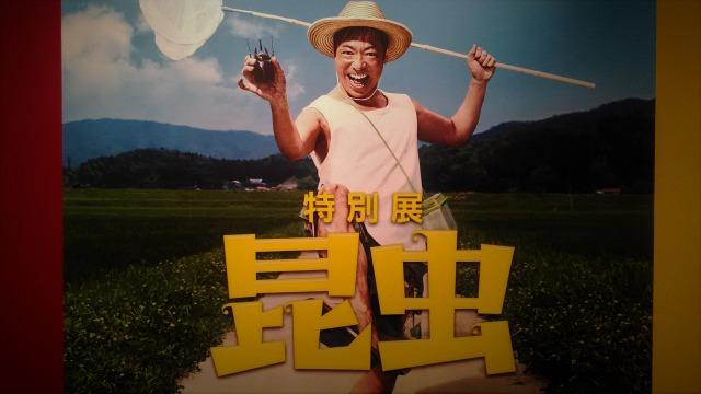 香川マイスター展示