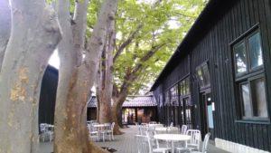 山居倉庫カフェ