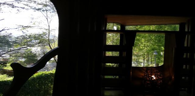森の家からの景色